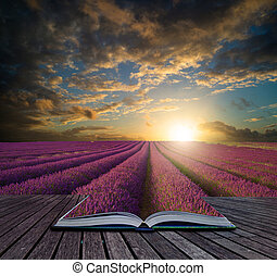 Book concept Stunning Summer sunset over lavender field landscape