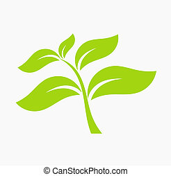 Leaf icon green leaf icon vector illustration