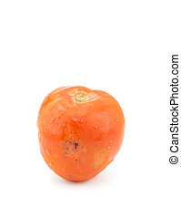 Rotten tomato  isolated on a white background