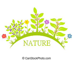 Nature flowers and plants - Flowers and plants, nature...