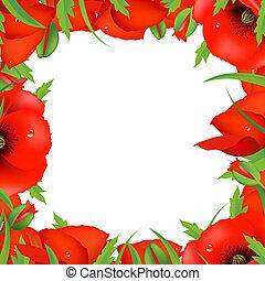 Red Poppy Frame, Vector Illustration