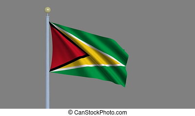 Flag of Guyana with alpha matte - Flag of Guyana waving in...