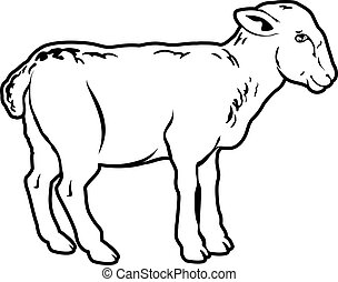 Lamb - An illustration of a lamb, could be a food label or...