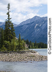 Athabasca River Scenic - View from the shoreline of the...