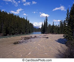 Bow River, Alberta, Canada.