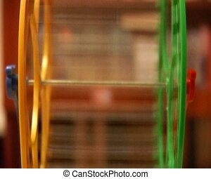 hamster wheel - close-up rotating hamster wheel