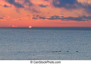 Sunrise over Lake Ontario - The rising sun peeps over Lake...