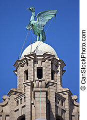 Liver Bird Perched on the Royal Liver Building - A Liver...