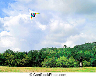 Flying a kite - A young boy flying kite at a sunny summer...