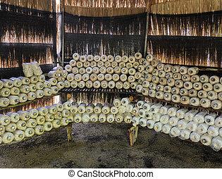 Mushroom cultivation - Oyster mushroom cultivation