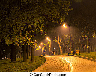 Night alley - Magic night alley: Green trees, road, shiny...