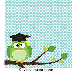 Owl with graduation cap sitting on branch