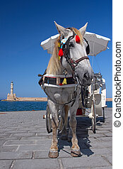 A horse carriage - A white horse hitched to a carriage on...