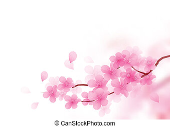 Cherry Blossom Branch Vector illustration.