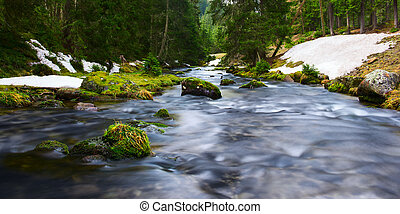 water of river flows through mossy rocks and green nature landscape