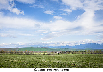 Country in spring, general view