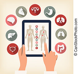 Two hands touching screen of a tablet with human organ icons...