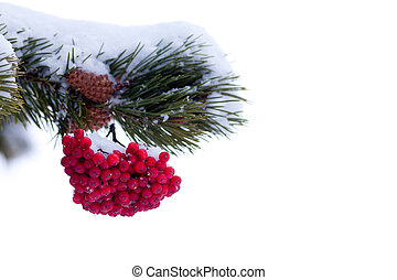 Red mountain ash berries Christmas tree ornament - Red...