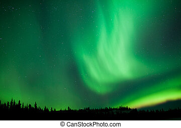Aurora borealis substorm swirls over boreal forest - Intense...