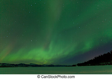 Northern Lights nightsky frozen Lake Laberge Yukon - Green...