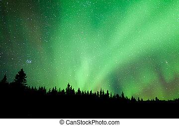 Boreal, bosque, Taiga, aurora, borealis, substorm, remolino