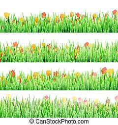 10, herbe, isolé,  EPS, vert, fleurs