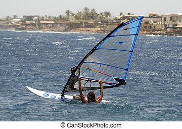 windsurfer, red sea beach resort, sinai, egypt
