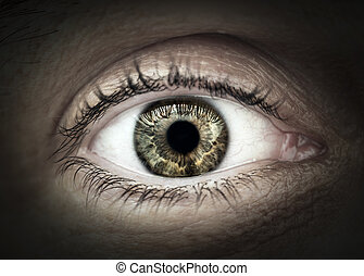 Male eye macro closeup - Macro closeup of male eye with...