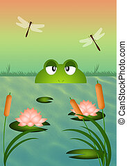 Frog in the pond - illustration of Frog in the pond