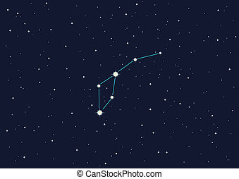 "constellation ""Dolphin\"""