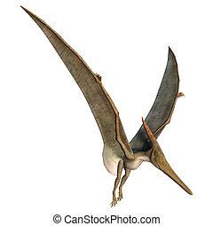 Landing Pteranodon - 3D digital render of a prehistoric...
