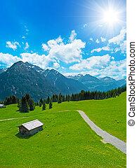 hut an alpine landscape