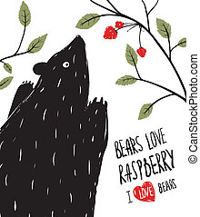Wild Black Bear Loves Raspberry - Black ink Bear and berries...