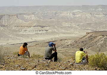 view - bird watcher sede boker desert, israel