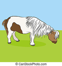 Miniature Horse - An image of a miniature horse.