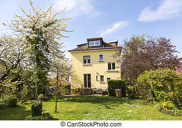 apple tree in the garden of a germany ols one family house