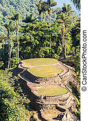 Ciudad Perdida in Colombia - Ancient city of Ciudad Perdida...