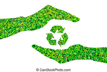 Recycle sign made of green leaf on hands ,isolated on white...