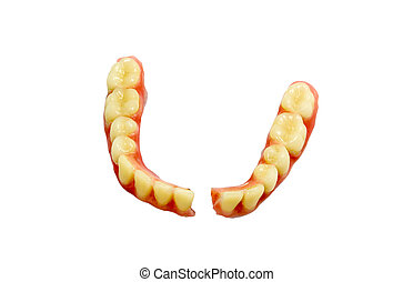 Broken denture isolate on white background