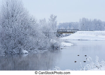 Winter landscape on the river Ducks