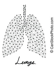 abstract of lungs line in vector