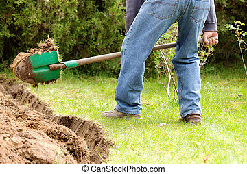Home gardening in the spring - A man digging in the garden...