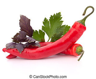 Hot red chili or chilli pepper and aromatic herbs leaves still life isolated on white background cutout