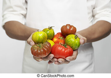 Chef holding tomatoes mid section