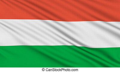 Hungarian flag, with real structure of a fabric