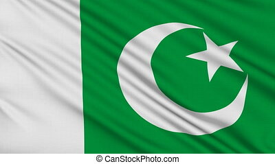 Pakistani flag, with real structure of a fabric