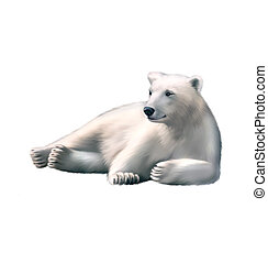 Illustration of Resting polar bear. isolated on white background