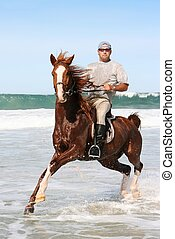 Horse riding in sea