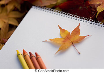 A sketchbook and fallen leaves