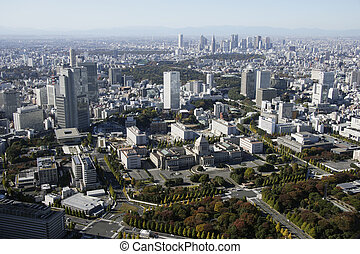Aerial view of Nagatacho areas